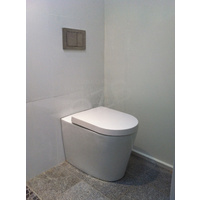 102 floor mount toilet pan